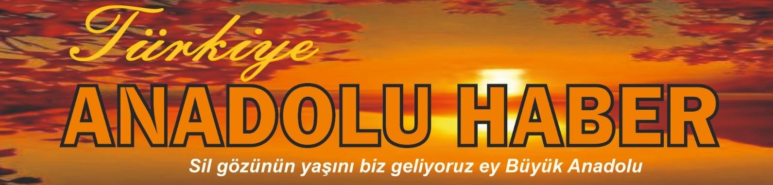 Türkiye Anadolu Haber